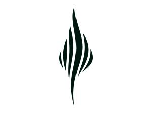 Burning Man Project Logos